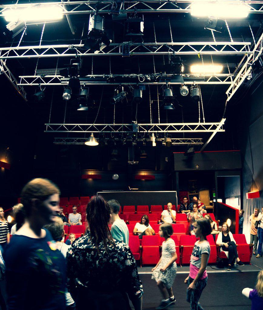 Dansles, musicalles, zangles, toneelles o beeldenfde kunstles in Sittard-Geleen volg je natuurlijk bij Pitboel Art School!